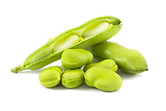 FAVA BEAN_iStock-182501050_LowRes.png