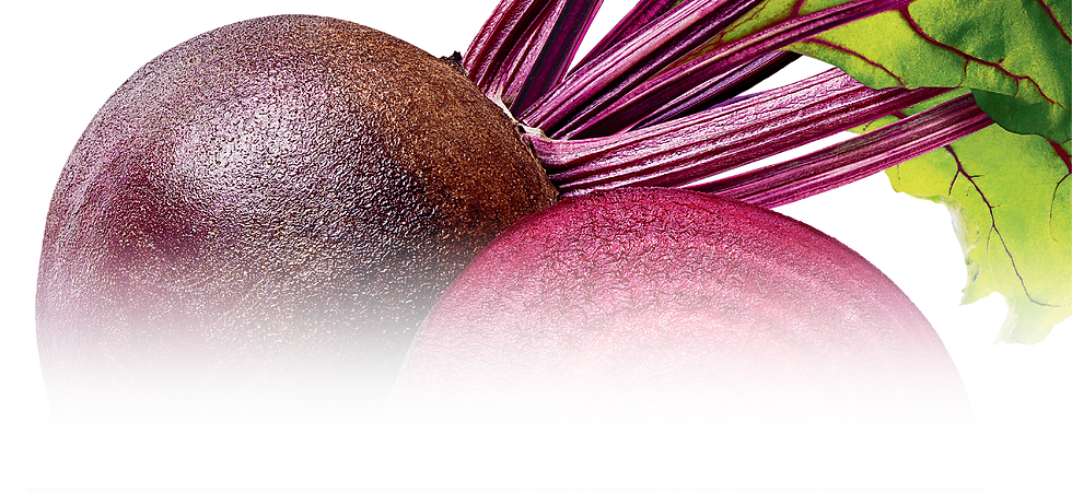 Products_Top Banner_Dried Beet.png