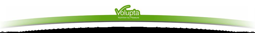 _VLPTA_Website_Header.png