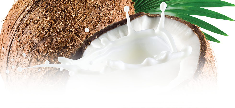 Products_Top Banner_Coconut Milk.png