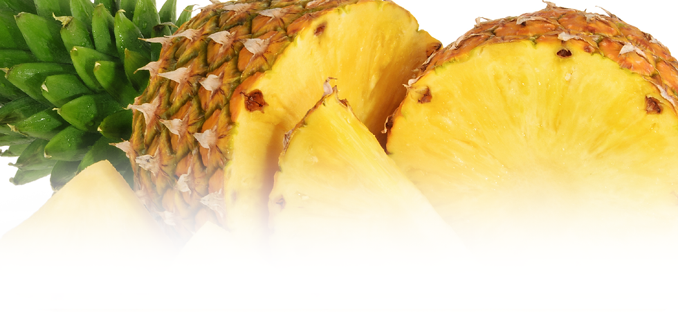 Products_Top Banner_Dried Pineapple.png