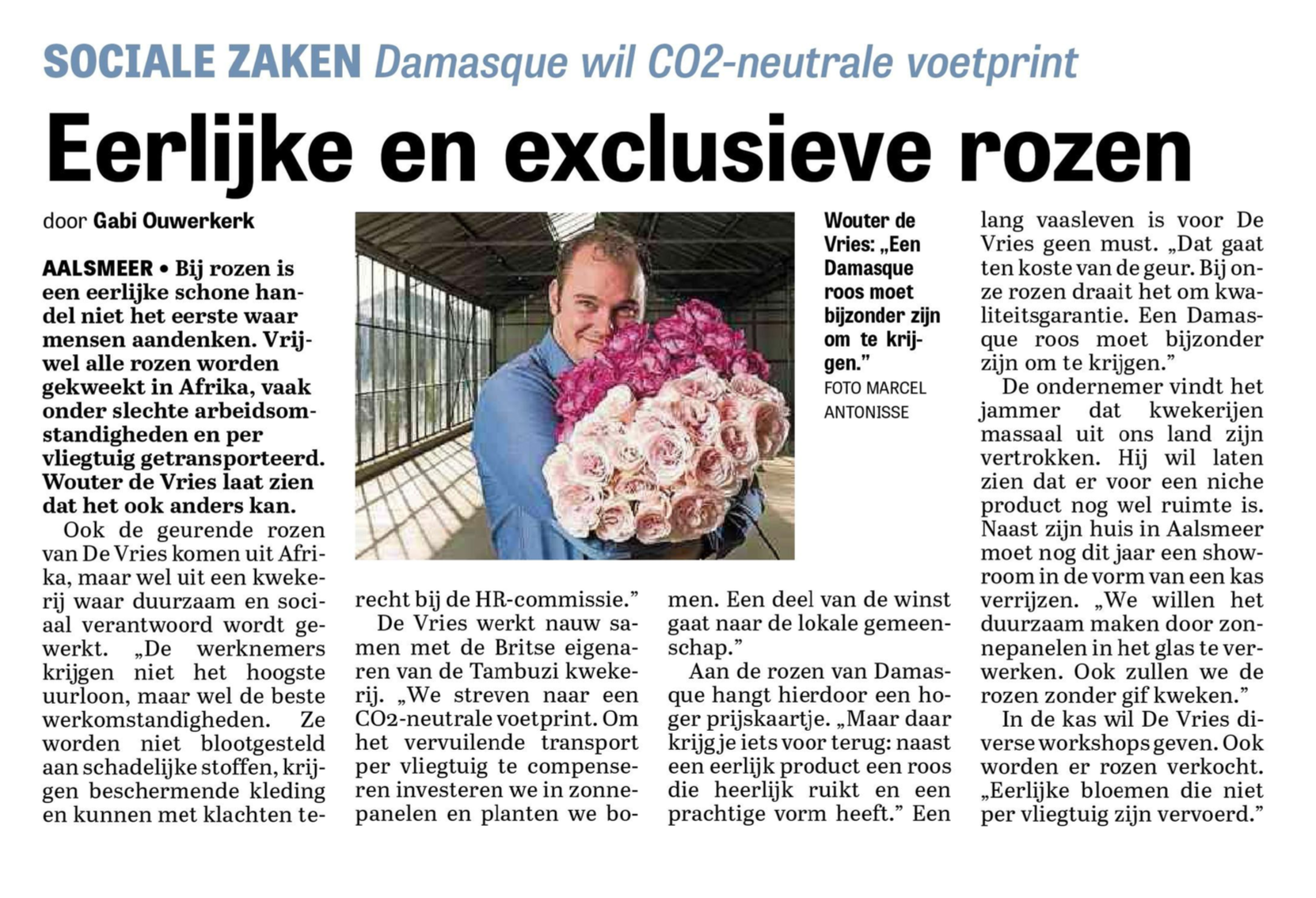 Damasque interview Telegraaf