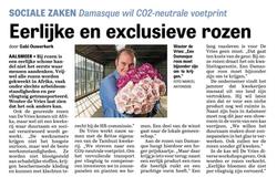 Damasque interview Telegraaf