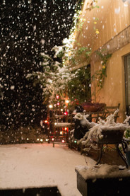 Snow Day-11.jpg