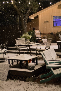 Snow Day-6.jpg