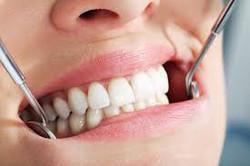stomatolog kraljevo