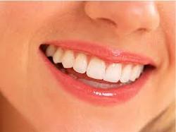 zubar kraljevo