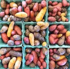 potatoes mixed fingerlings.jpg