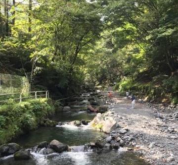 【週末ノマドライフ】奥多摩に四国八十八ヶ所巡りの休憩所