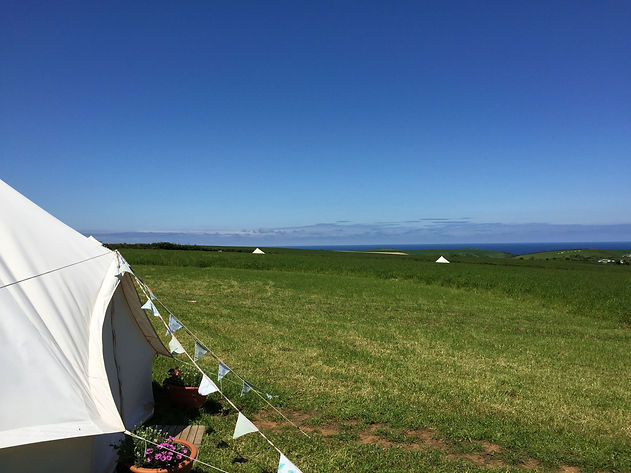 bunting soc tent site view.jpg