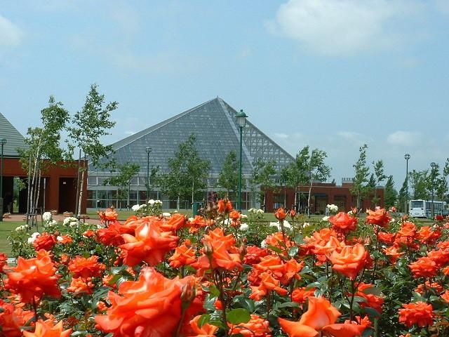 いわみざわ公園ばら園と色彩館(写真:岩見沢市提供)