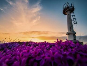 北海道留萌市のLGBT施策と市長応援メッセージ|2021年版
