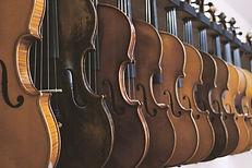 A line of violins