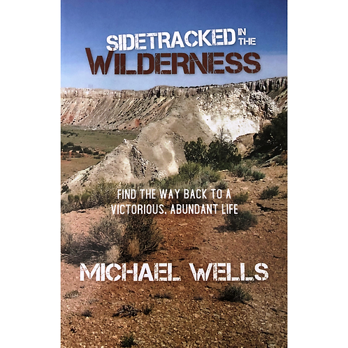 Sidetracked in the Wilderness - 10 book discount