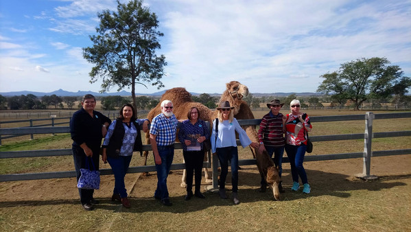 Summer Land Camel Farm