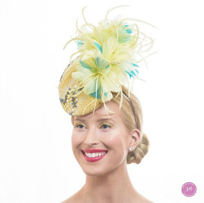 Agave hat