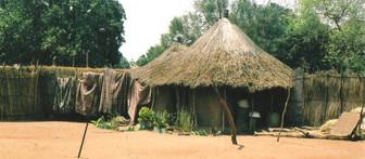 20d house in village (2).jpg