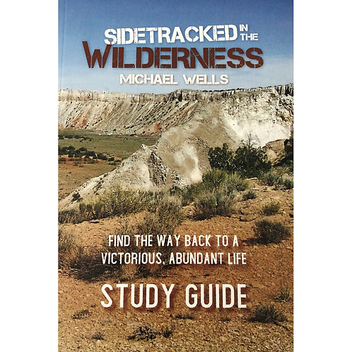 Sidetracked in the Wilderness - Study Guide