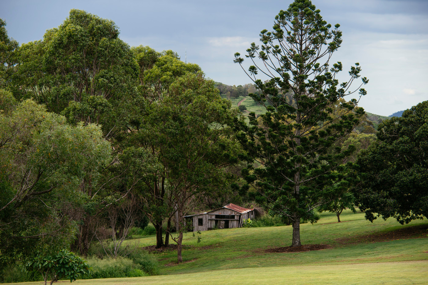 Mt Alford Lodge grounds