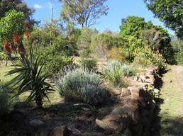 The gardens at Bilyana Cottages