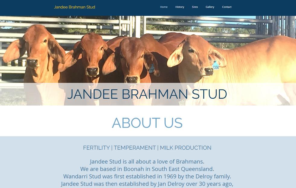 Jandee Brahman Stud