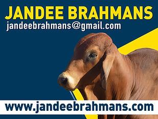 Jandee Brahmans Logo.jpg