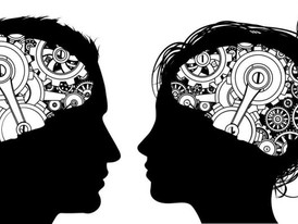 The Truth About Differences Between the Male and Female Brain
