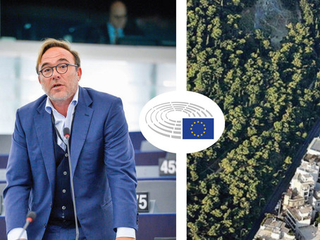 «Καταστροφικές για το περιβάλλον οι αλλαγές στους δασικούς χάρτες»