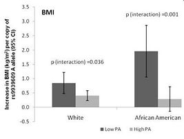 FTO gene variants, physical activity attenuate genetic risk for obesity. DNA diet
