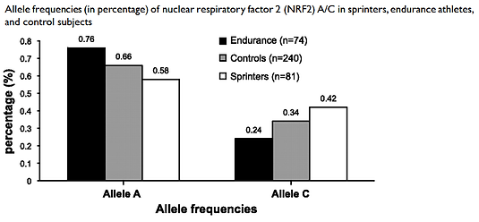 NRF2 GABPB1 genetic variant analysis for VO2max and respiratory capcity, endurance performance