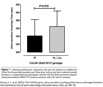 Genetic variation (SNP) in COL5A1 gene affect running economy among marathon runners by tendon stiffness and flexibility