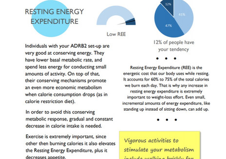 Energy metabolism and Resting Energy Expenditure