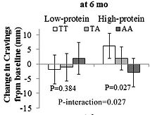 FTO gene variants, change in craving, in high protein diet vs. low protein diet, as part of a DNA diet