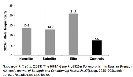 HIF1A genetic variants (SNP) alleles in elite power athletes. Muscle fiber type in aerobic sports