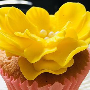 Cupcakesvilla786.jpg