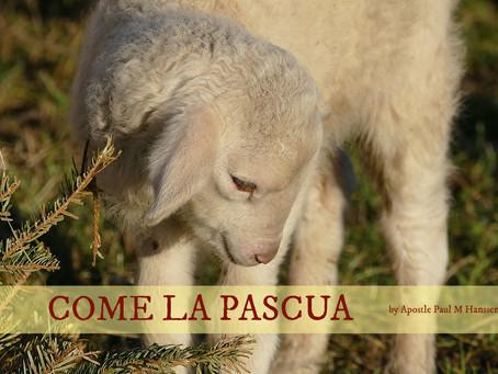 COME LA PASCUA – Paul M Hanssen