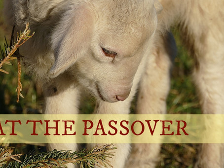 EAT THE PASSOVER - by Paul M Hanssen