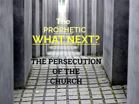 The Prophetic WHAT NEXT? The Coming Persecution of the Church - by Paul M Hanssen
