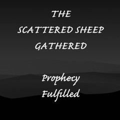 THE SCATTERED SHEEP GATHERED - Prophecy Fulfilled                      by Pastor Paul M Hanssen