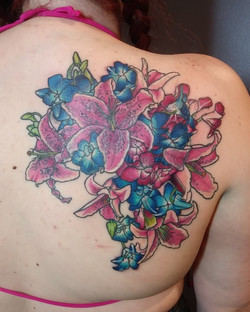 Stargazers & Orchids Color1