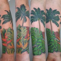 Tropical Cuff Color