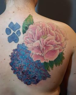 Hydrangea & Peony Color1