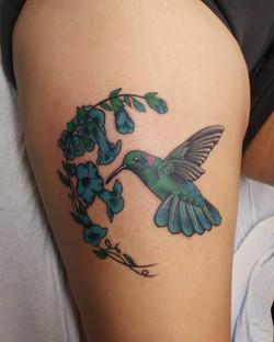 Humming Bird Thigh