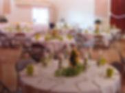 indoor wedding.jpg