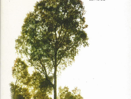 Ernst Jünger: La Forêt Symbolique