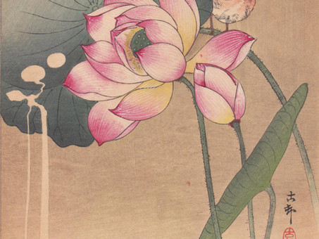To Have or to Be ? : Reactions to a flower