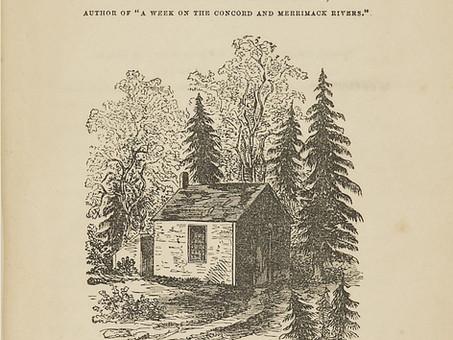 H. D. Thoreau: The Rich Life