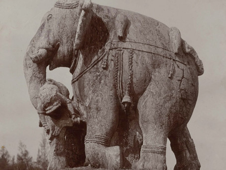 """Naga-Vagga"" : L'éléphant"
