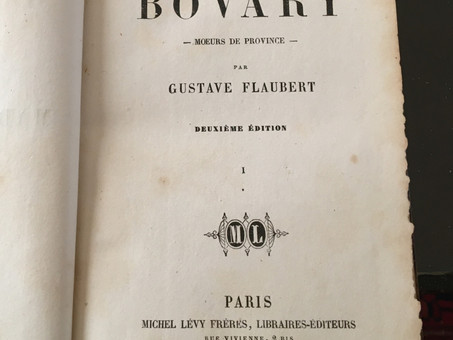 Le Capharnaüm de Monsieur Homais (Flaubert ; Madame Bovary)