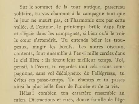 """""""Le Passereau Solitaire"""", par Giacomo Leopardi"""